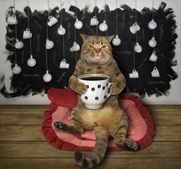 The cat with a cup of  black coffee sits on a lounger.