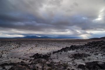 Wonder Valley, Mojave Desert, CA