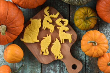 Sweet homemade animal shaped cookies: bear, moose, wolf on wooden board surrounded with raw bright orange pumpkins