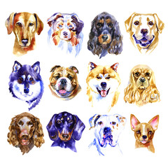 Watercolor illustration set of dogs isolated on white background