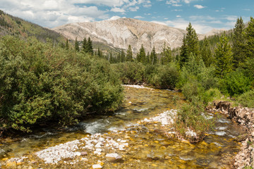 Green Fork in the Scapegoat Wilderness