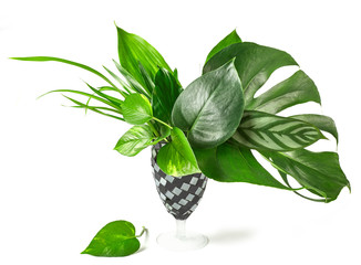 Wall Mural - bouquet of tropical leaves