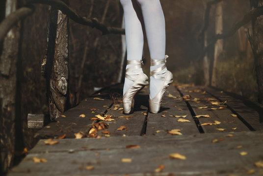 Ballet dancer in nature