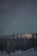 Big White Stars V