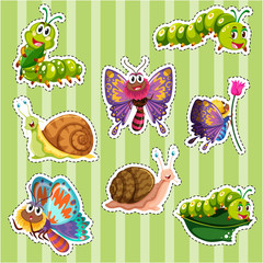 Sticker set for different types of insects