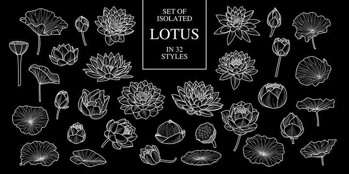 Set of isolated lotus in 32 styles. Cute hand drawn flower vector illustration only white outline.