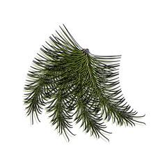 christmas pick vector illustration