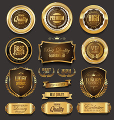 Blank golden frame badge and label vector collection