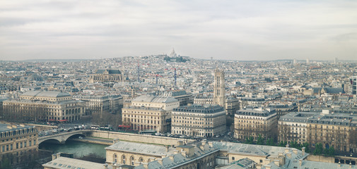 Paris skyline seen from Notre Dame cathedral