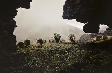 Climber hiking through dense tropical vegetation on Mt. Kilimanjaro