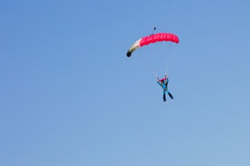 Foto op Aluminium Luchtsport skydiver on black and pink parachute on background clear blue sky
