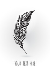Beauty peacock feather. Hand drawing illustration. Vector illustration