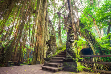A stone bridge in a rainforest covered with moss, against a background of tall trees and hanging lianas, the rays of the bright sun make their way. Dragon Bridge in Monkey Forest, Ubud Bali Indonesia.