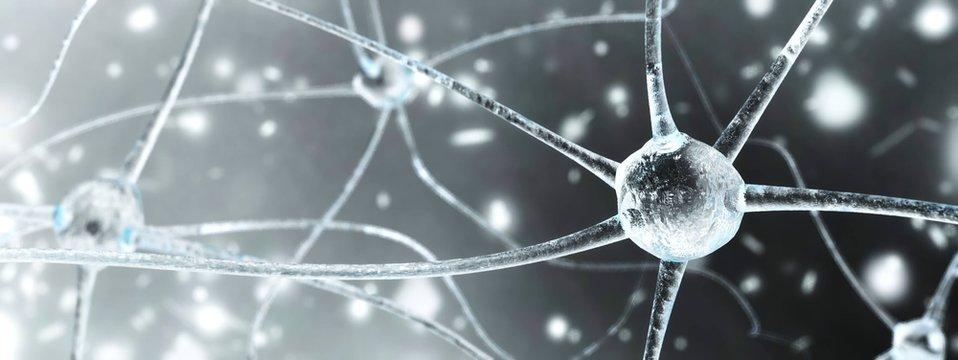 neuron close-up, nerve node, neural network close-up, banner