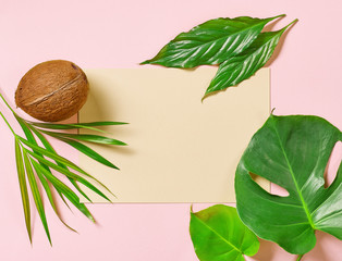 Wall Mural - tropical leaves and coconut
