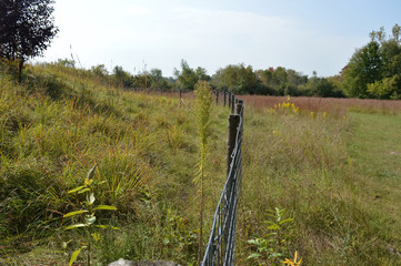 Fence in the prairie landscape
