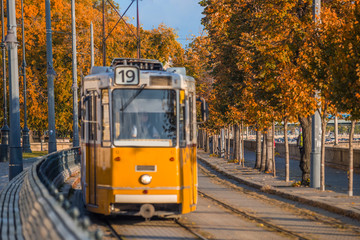 Budapest, Hungary - Autumn foliage with traditional yellow tram on the move at the riverside of Buda in the morning