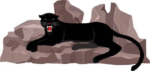 Black panther lying on the stones, vector illustration