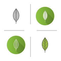 Walnut leaf icon