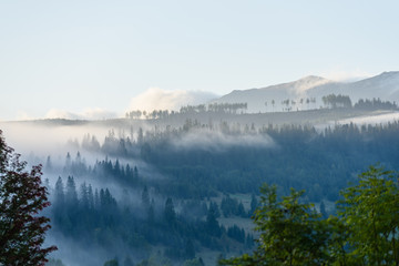 mist covered mountains with forests