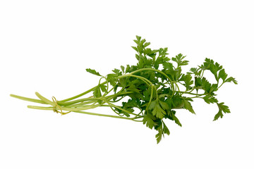 Organic fresh parsley isolated on a white background