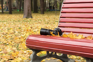 Camera on the red bench and among fall yellow maple leaves in the city park; Autumn mood