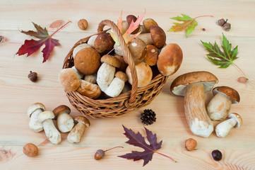 Basket of white mushrooms (Boletus edulis) on a wooden table. Autumn still life