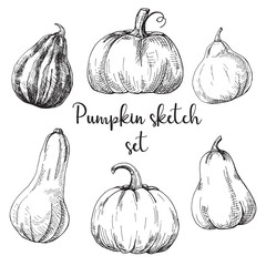 Hand drawn pumpkin set isolated on white background. Vector illustration of a sketch style.