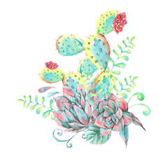 Watercolor natural seamless pattern with cactus