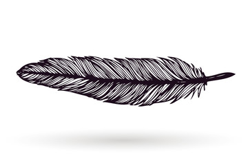 Hand drawn ink feather