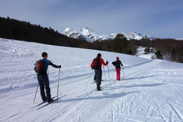 cross country skiing in two groups