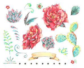 Watercolor set of natural hand painted design elements