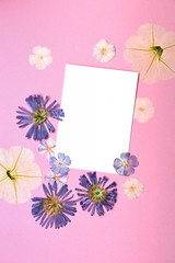 Spring empty card with flowers on pink background.