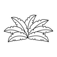 exotic jungle bush icon