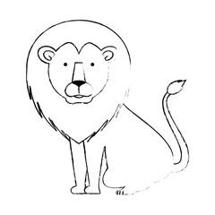 wild and big lion