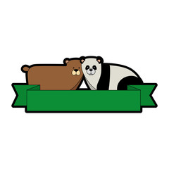 wild bears panda and grizzly
