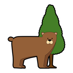 wild grizzly bear with tree