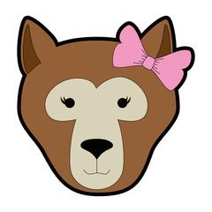 wild bear kodiak head