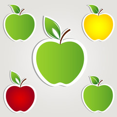 Apple set. Vector