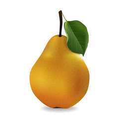 juicy pear, delicious fruit on white background in realistic style