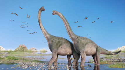 couple of Brachiosaurus altithorax and a flock of Pterosaurs in a scenic Late Jurassic landscape