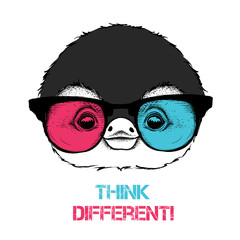 Portrait of the penguin in the colored glasses. Think different. Vector illustration.