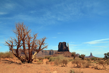 View of Monument Valley Navajo Tribal Park. Utah, United States