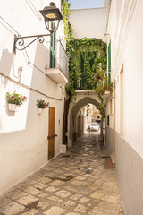 Alleyway and arch in the historic center of Fasano (Italy)