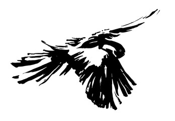 Decorative flying bird painted by black ink. Hand drawn vector illustration.