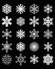 Set of different white snowflakes on a black background
