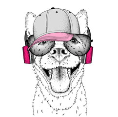 A dog in headphones. Hipster dog in cap. Vector illustration