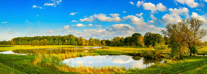 Wall Mural - Beautiful landscape with meadows, ponds and trees in autumn