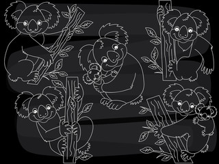 Vector Chalkboard Cute Koalas Set