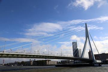 Schifffahrt im Hafen Rotterdam mit Erasmusbrug, Flagge und Panorama